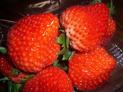 越後姫イチゴ