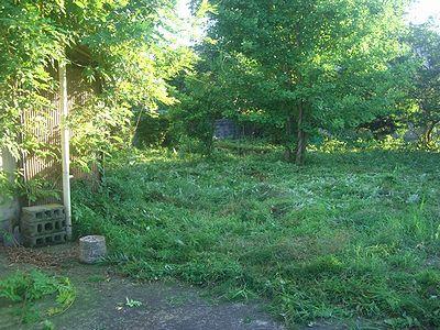 草刈終了.jpg