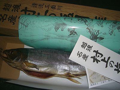 新物 塩引鮭.jpg