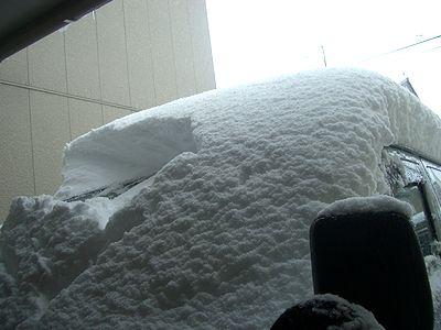 雪に覆われました