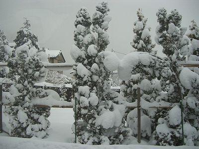 雪国.jpg